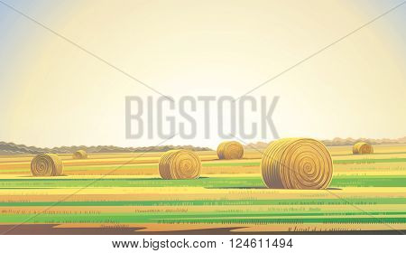 Agriculture field with bales of hay. Countryside landscape.