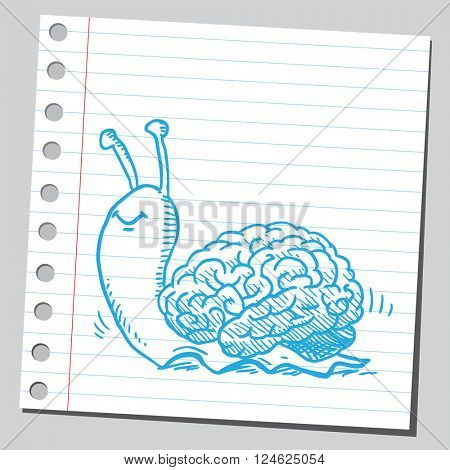 Snail brain