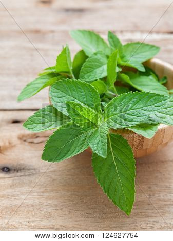 Closeup fresh peppermint leaves in the wooden bowl on rustic table. Shallow dept of field .