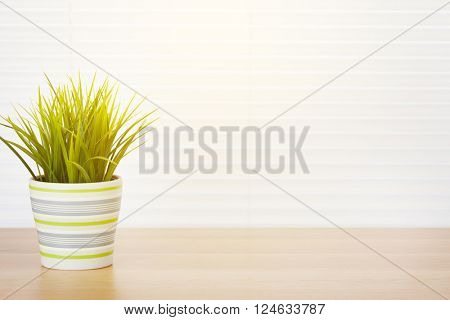 Office workplace with potted plant on wood desk table in front of window with blinds