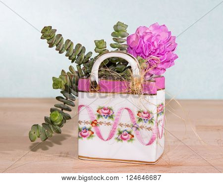 Succulents planted in a colorful ceramic bag a creative way to give a small induvidual present.