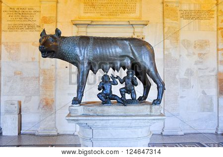 The Capitoline Wolf in musem the citi