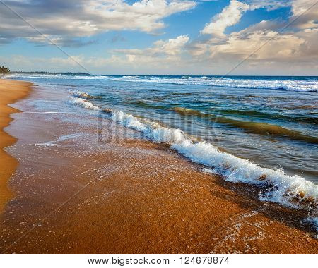 Wave surging on sand on beach
