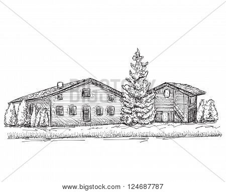 Hand drawn house sketch. Doodles tree. Village house in the forest.