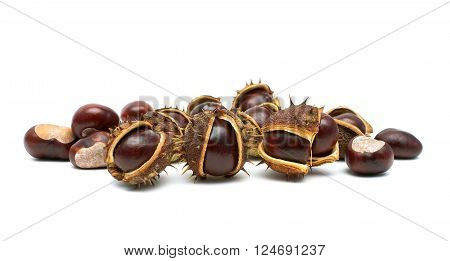 mature chestnuts isolated on a white background. horizontal photo.