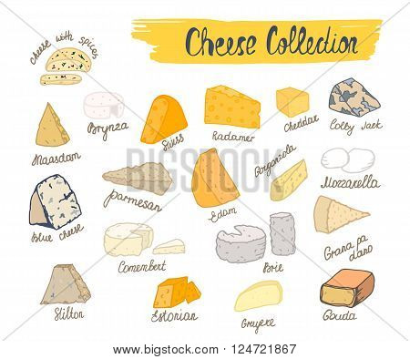 Cheese collection. Vector illustration of cheese types in hand drawn style. Cheese Isolated on white