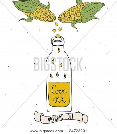 Corn oil in bottle. Drops of corn oil. Vector hand drawn illustration isolated on white