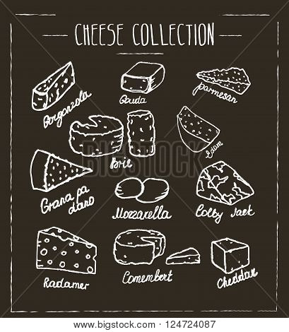 Cheese collection. Hand drawn vector type of cheese on chalk board