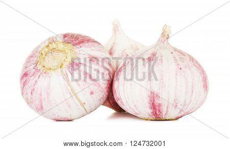 chinese solo garlic, isolated on white background