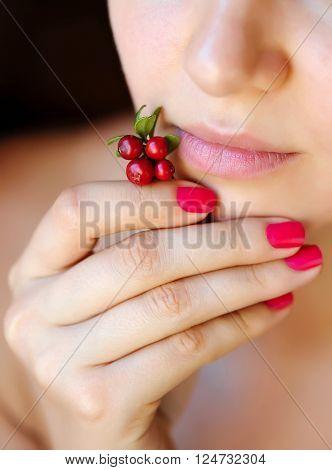 Berries Cowberry (Vaccinium vitis-idaea) in woman hand