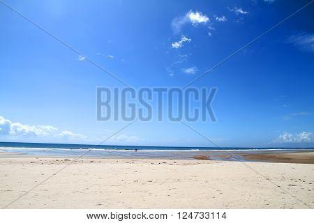 The beach of Bahia Brazil South america.