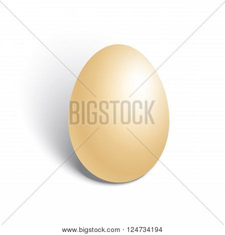 Realistic chicken egg on white background. Vector illustration.