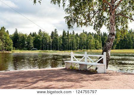 Garden bench near a burch tree. Mon Repos park in Vyborg. Russia.