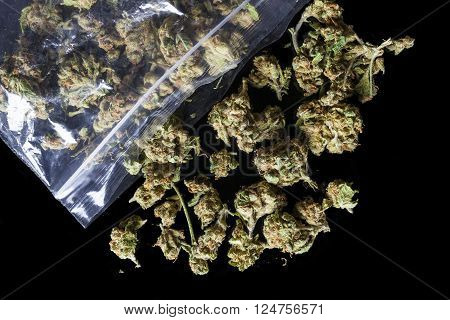 Pile of medical cannabis dried buds scattered from nylon package on black background from above