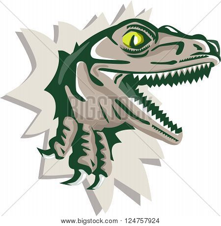 Illustration of a raptor t-rex dinosaur lizard reptile head breaking out of wall viewed from the side on isolated background done in retro style.