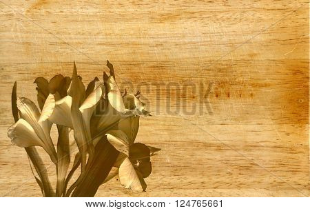The beautiful floral background with wooden texture