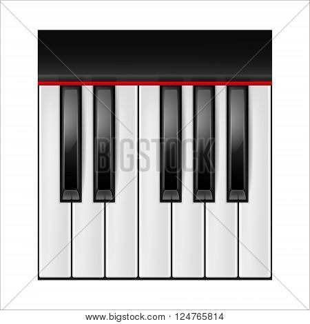 Realistic piano keys isolated on a white background. Octave.  Vector EPS10 illustration.