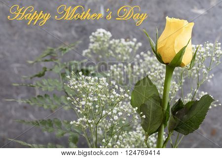 Mother's Day Yellow Rose and Baby's Breath