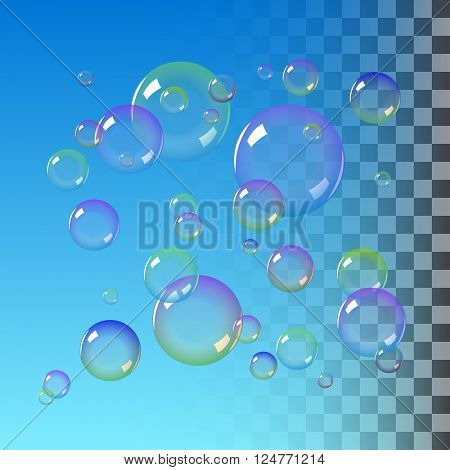 Realistic soap bubbles with rainbow colors. vector soap bubble illustration
