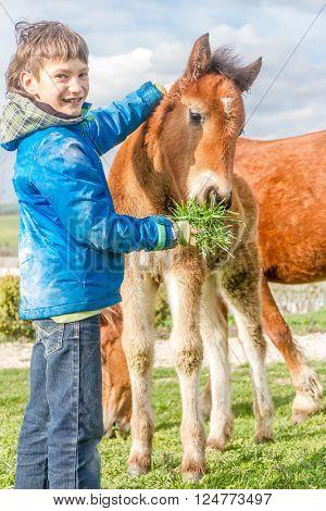 outdoor portrait of young european boy feeding horse on farm