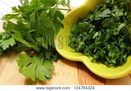 Bunch of fresh natural and green parsley and chopped parsley in background lying on wooden cutting board concept for healthy eating