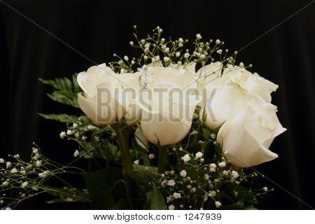 Image Of A Dozen White Roses