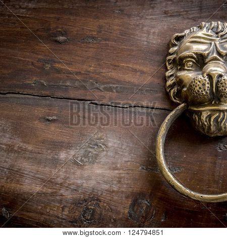 Door knocker with lion on wooden door.