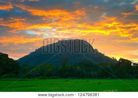 Famous Sigiriya Rock. Sri Lanka