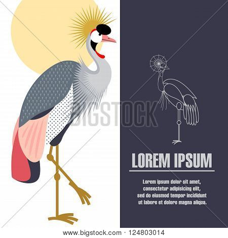 Vector illustration of Crowned crane. Template posters, placard, brochure, flyer, book page with a picture of a bird and space for text.
