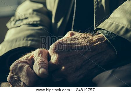 Old Human Hands