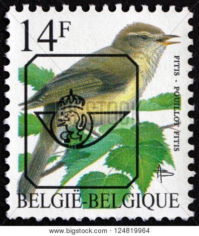 BELGIUM - CIRCA 1992: a stamp printed in the Belgium shows Willow Warbler Phyloscopus Trochilus bird circa 1992