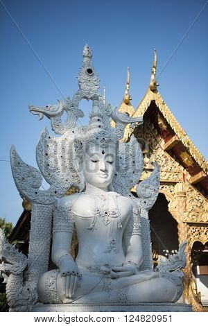 the Wat chedi Luang in the city of Chiang Mai in North Thailand in Thailand in southeastasia.