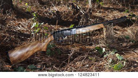Firearm that shoots twenty two ammunition in a forest