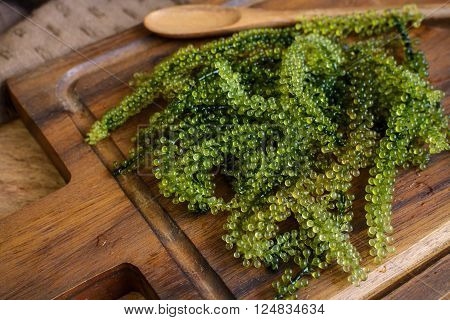 Sea Grapes (Caulerpa Lentillifera) seaweed on wooden table
