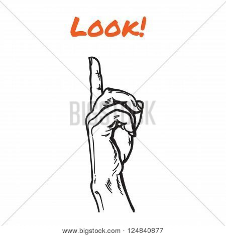 Finger. Finger pointing. Pointer. Show direction. Pointing at something. Sketch hand, black and white vector illustration. One hand. Direction. Hand with a finger, touching anything