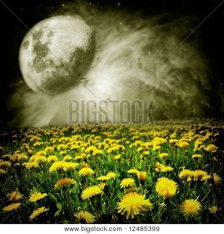 Lua sobre campo-Leão