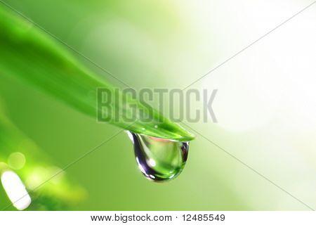 water drop shine in sun light