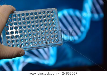 The DNA testing. Photo well plates at a scientific background.
