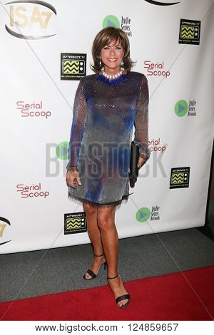 LOS ANGELES - APR 6:  Colleen Zenk at the 7th Annual Indie Series Awards at the El Portal Theater on April 6, 2016 in North Hollywood, CA