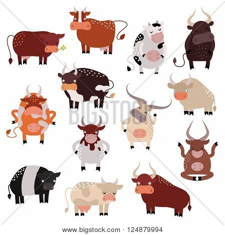 Milk cow bull and cow with calf bull buffalo. Different cows colors dairy farm beef, nature domestic bovine cow. Cartoon cow action set, with cute lovely heifer different in different poses vector.