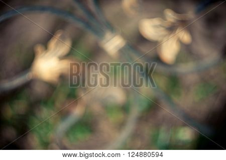 vintage forged petals on the shoots blur background