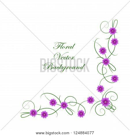 Floral vector background. Corner frame with violet mallow flowers isolated on white background for use in your design.