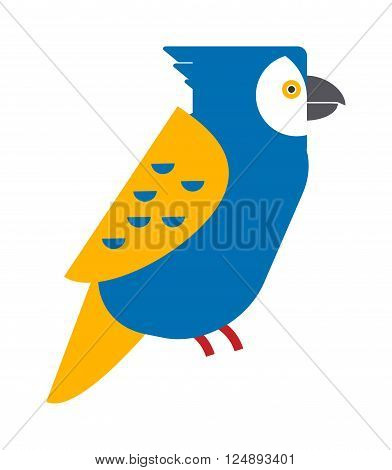 Cartoon parrot wild animal parrot bird. Tropical parrot feather zoo bird, tropical fauna parrot flying ara. Cartoon exotic parrot bird vector illustration. Parrot vector