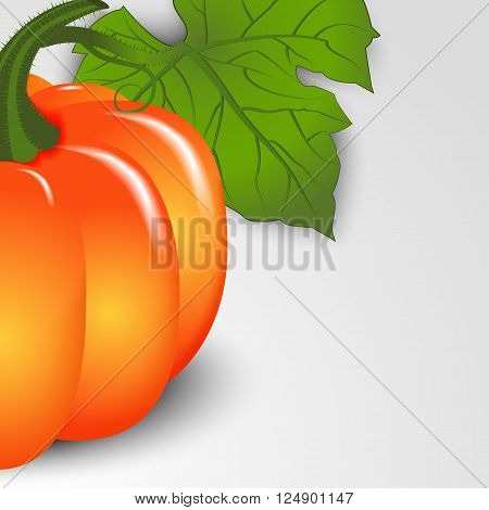 Autumn background. Pumpkin close-up with space for text. Vector illustration.