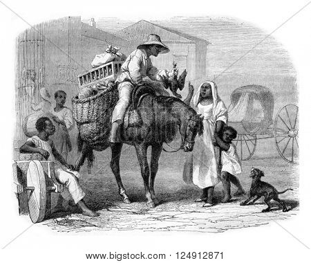 Merchants of fruits and poultry, Cuba, vintage engraved illustration. Magasin Pittoresque 1857.