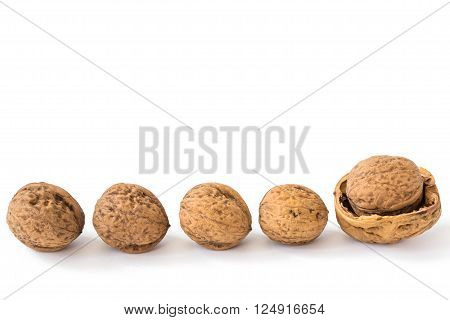 Four walnuts in line and a half walnut shell in which have a whole walnut. Isolated on white background.