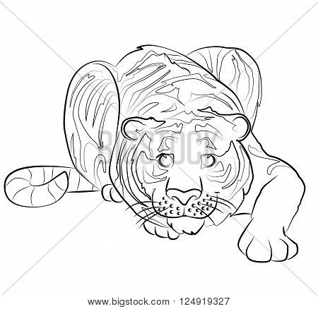 black and white tiger image - perfect for children's coloring book and not only