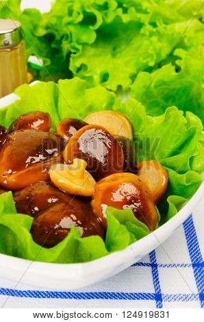 Marinated mushrooms with lettuce. The white plate on a checkered napkin.