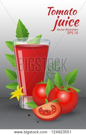 Food and drinks vector illustration. A glass of of tasty fresh tomato juice with red ripe tomatoes green tomato leafs blossom and dill isolated on grey background. Realistic style
