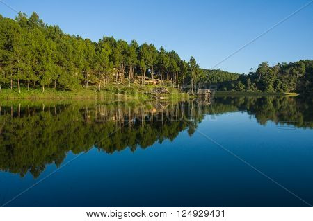 pang ung , reflection of pine tree in a lake , meahongson , Thailand